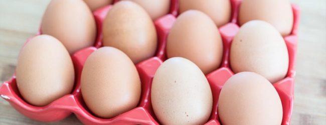 L'Italia non è a rischio di uova contaminate