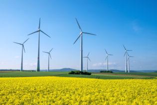 Va a gonfie vele l'energia pulita del vento